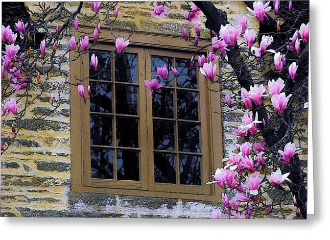 Spring Window Greeting Card by Joyce Kimble Smith