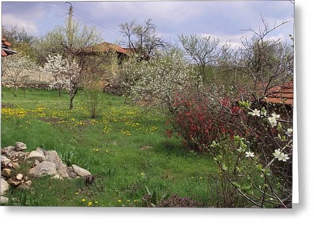Spring Yard Greeting Card by David Du Hempsey