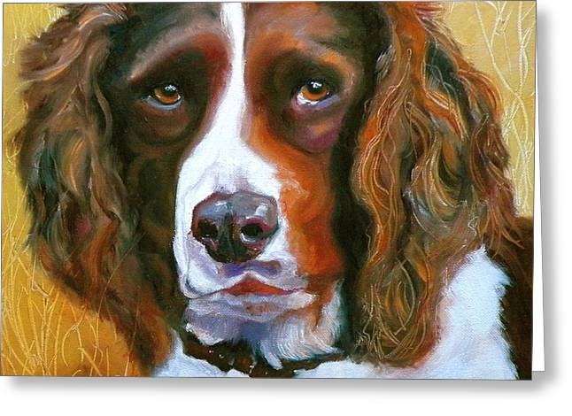 Spaniel Greeting Cards - Springer Spaniel Greeting Card by Susan A Becker