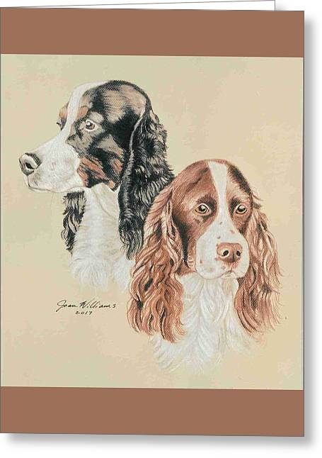 Springer Spaniels Greeting Card by Joan Williams