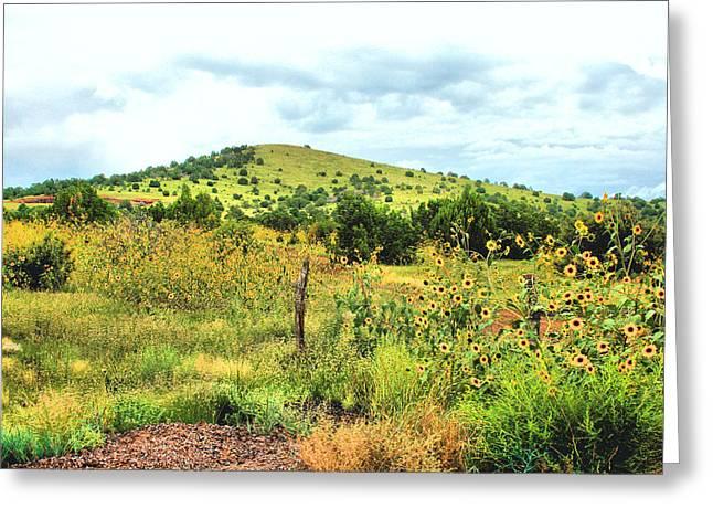 Springerville Sunflowers 0060 Greeting Card by Sharon Broucek