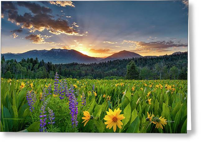 Spring's Delight Greeting Card by Leland D Howard