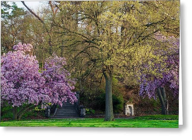 Springtime Along Kelly Drive - Philadelphia Greeting Card by Bill Cannon