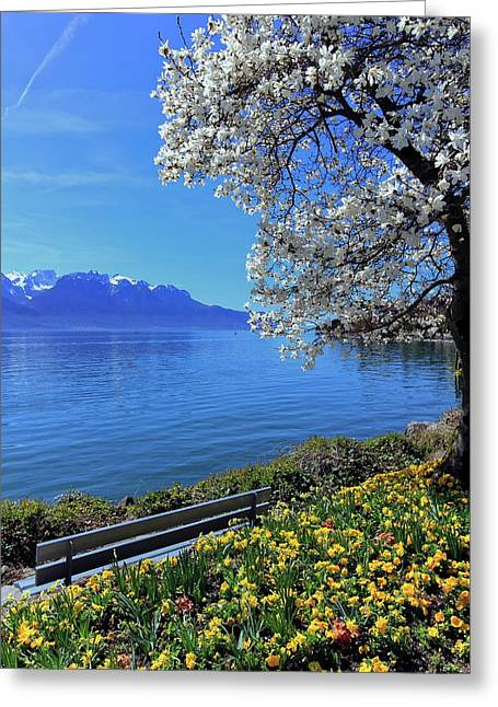 Springtime At Geneva Or Leman Lake, Montreux, Switzerland Greeting Card by Elenarts - Elena Duvernay photo