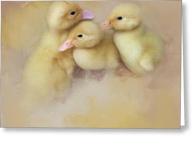 Springtime Babies Greeting Card