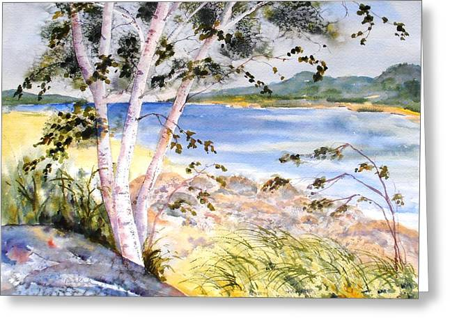 Springtime Birches Greeting Card