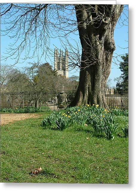 Springtime In Christchurch Meadows. Greeting Card