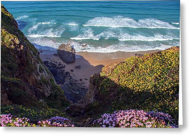 Springtime In Cornwall Greeting Card