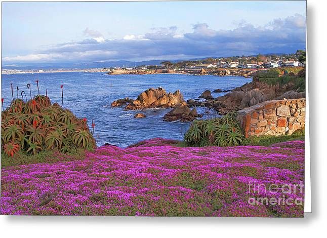 Springtime In Pacific Grove Greeting Card