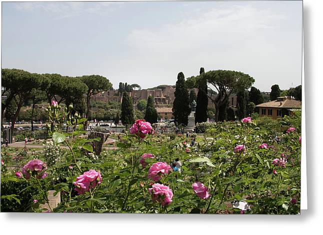 springtime in Rome Palatino from rose garden 1 Greeting Card