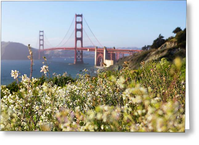 Greeting Card featuring the photograph Springtime On The Bay by Everet Regal