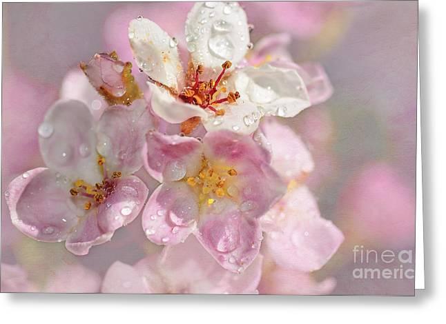 Springtime Pink By Kaye Menner Greeting Card by Kaye Menner