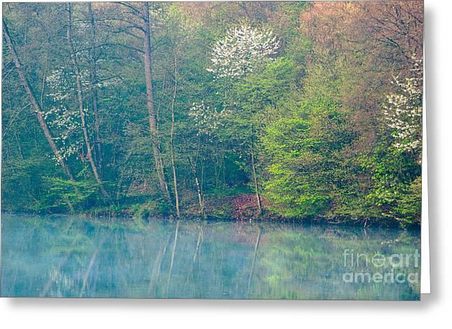 Springtime Reflection Greeting Card