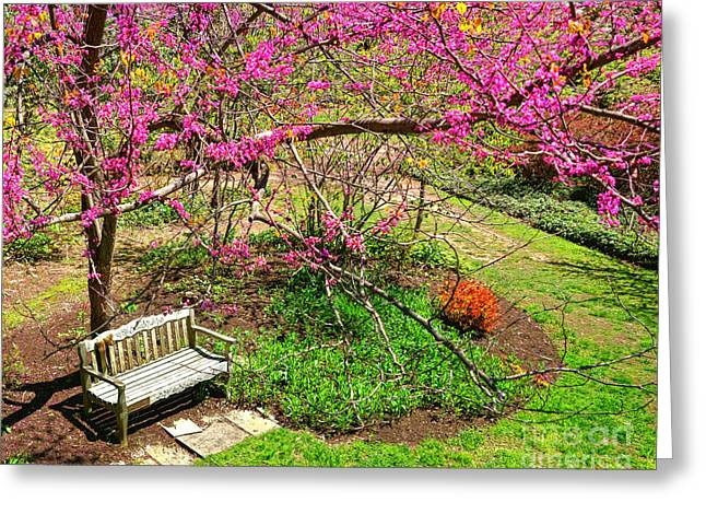 Springtime Retreat  Greeting Card by Olivier Le Queinec