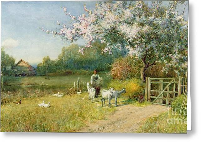 Springtime Greeting Card by Sir Alfred East