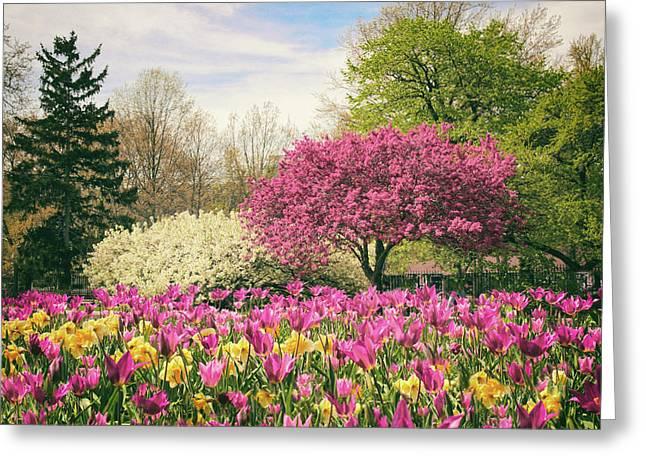 Springtime Tulips Greeting Card by Jessica Jenney