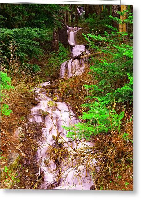 Springtime Waterfall  Greeting Card by Jeff Swan