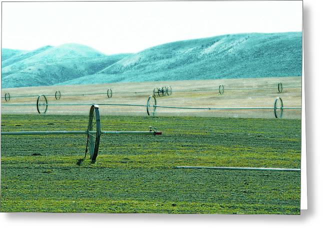 Sprinkler - Eastern Wa Greeting Card
