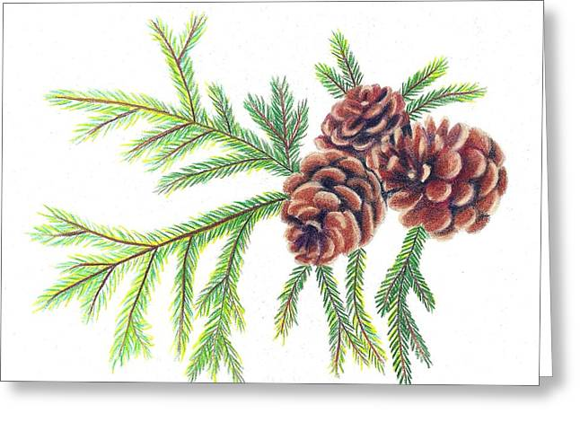 Spruce Pine Greeting Card