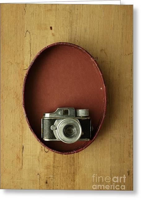 Spy Camera Greeting Card by Edward Fielding