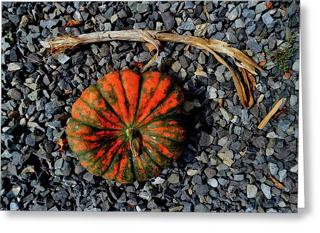 Squash Gravel Stem Greeting Card by Mark Victors