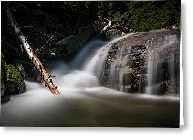 Greeting Card featuring the photograph Squaw Creek by Sean Foster