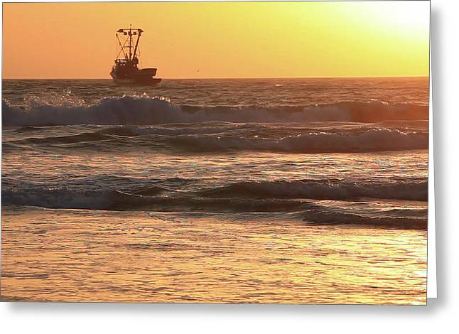 Squid Boat Golden Sunset Greeting Card