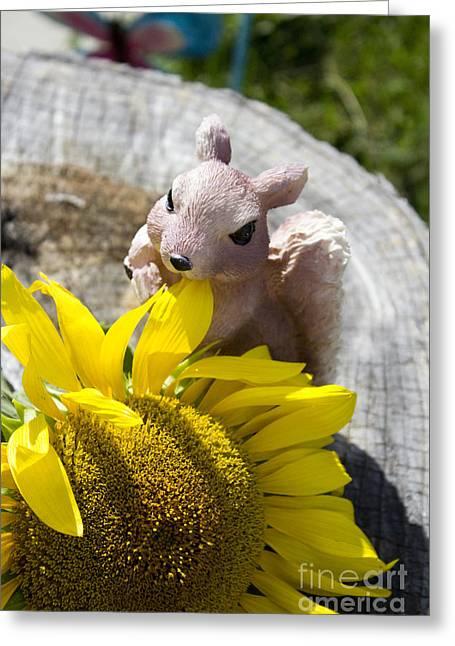 Squirrel And Sun Flower Greeting Card by Tara Lynn