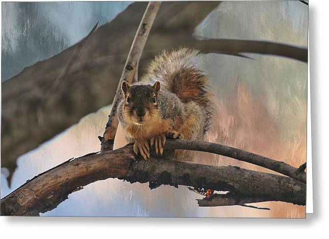 Squirrel Buddy Greeting Card by Theresa Campbell