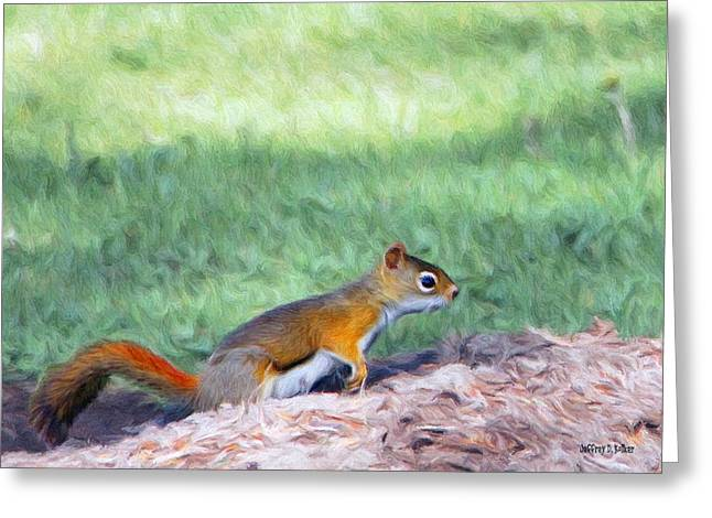 Squirrel In The Park Greeting Card by Jeff Kolker