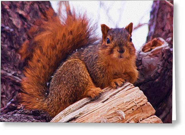 Squirrel In Tree Greeting Card