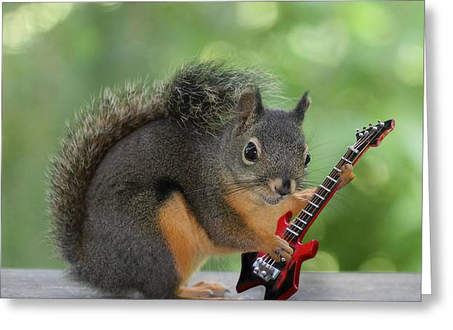 Squirrel Playing Electric Guitar Greeting Card