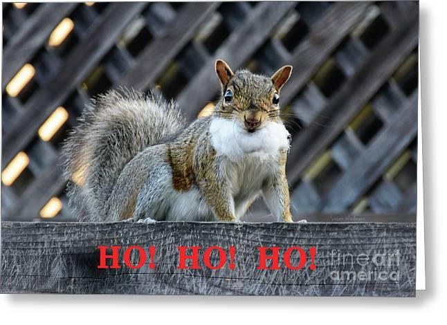 Squirrel Santa Ho Ho Ho Greeting Card