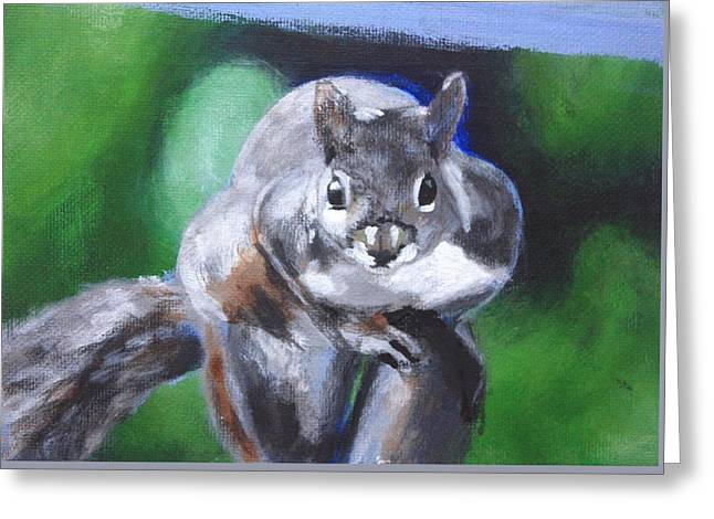 Squirrel Greeting Card by Sarah Vandenbusch