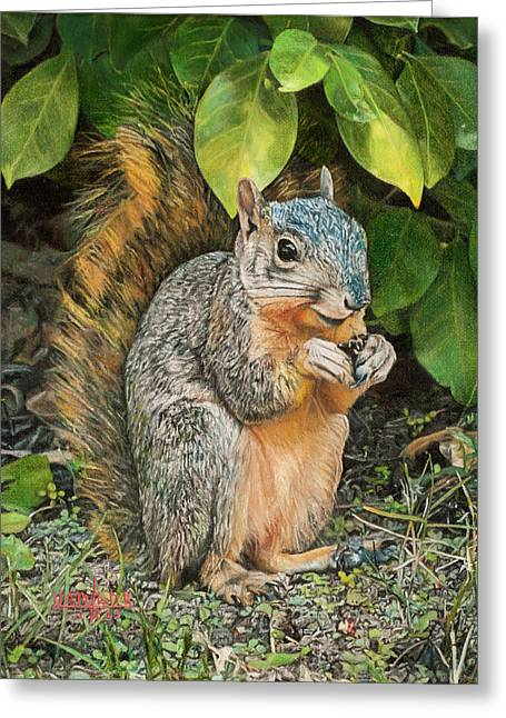 Squirrel Under Bush Greeting Card