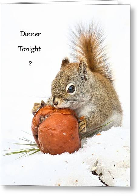 Greeting Card featuring the photograph Squirrely Invite To Dinner by Debbie Stahre