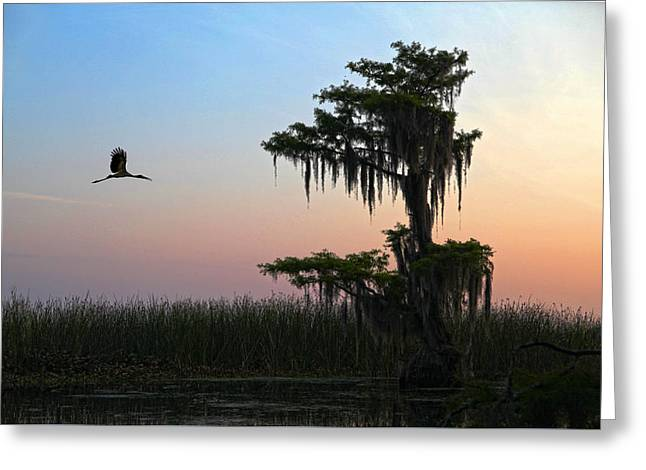 St Augustine Morning Greeting Card