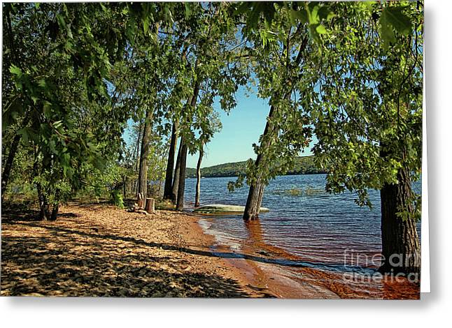 St Croix River Shoreline Greeting Card