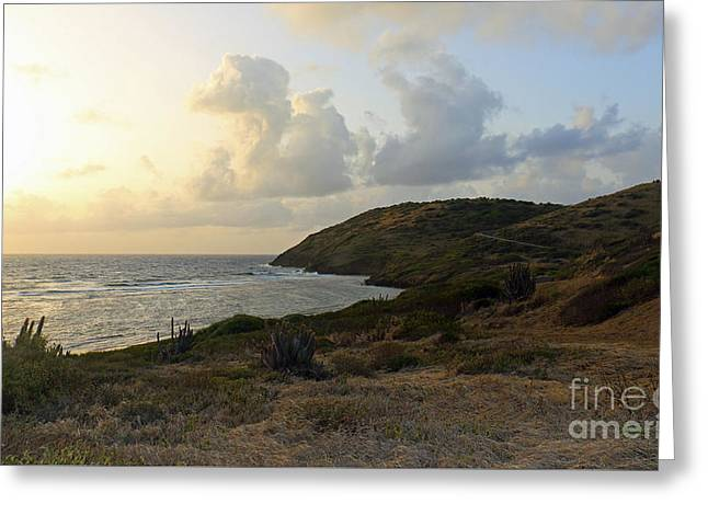 St. Croix Sunrise  Greeting Card
