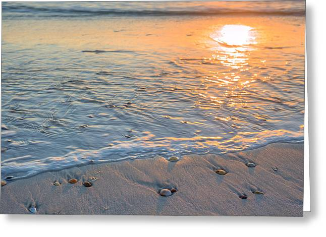 St Joe State Park Greeting Card by JC Findley