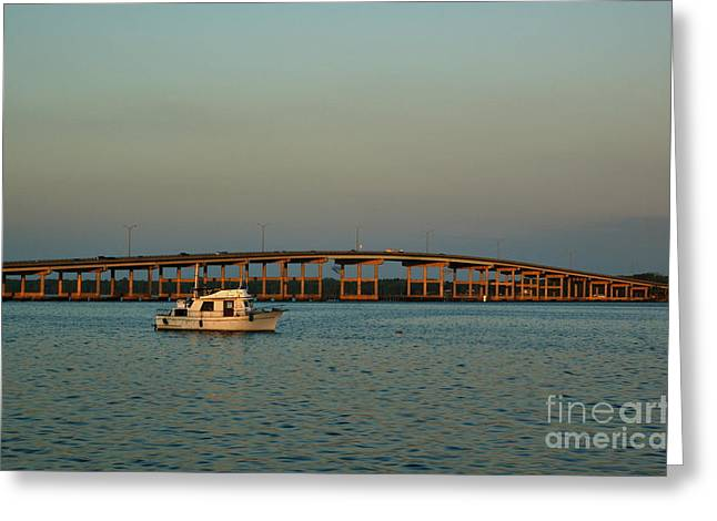 St. Johns River At Palatka Greeting Card by Kathi Shotwell