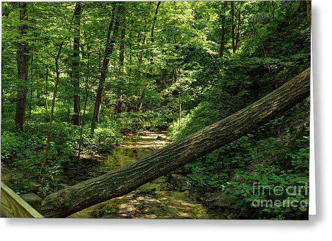 St. Louis Canyon 1 Hdr Greeting Card