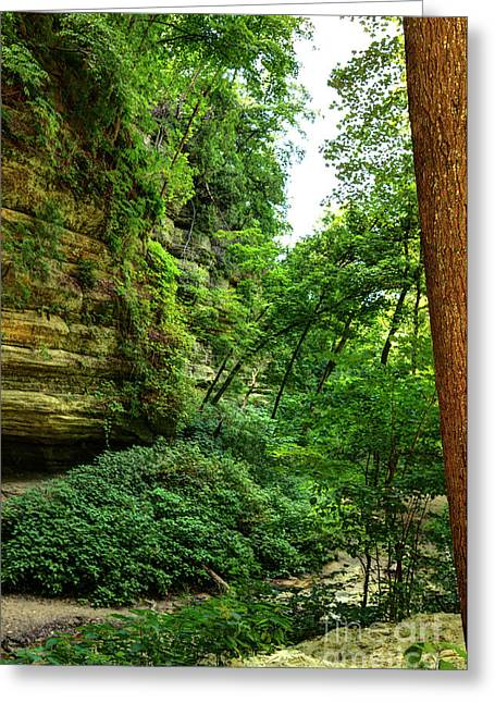 St. Louis Canyon 5 Hdr Greeting Card