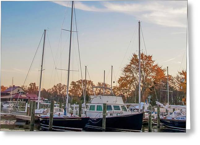 St Michaels Maryland Marina Greeting Card