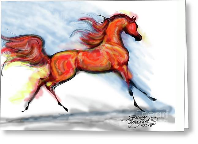 Staceys Arabian Horse Greeting Card by Stacey Mayer