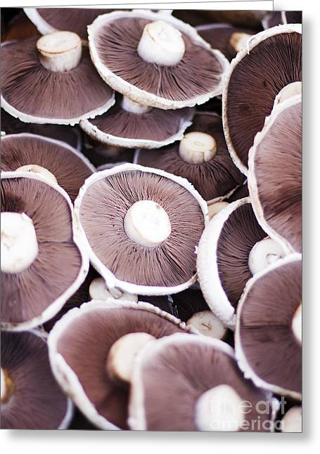Stacked Mushrooms Greeting Card by Jorgo Photography - Wall Art Gallery
