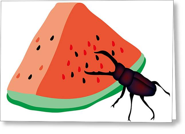Stag Beetle Is Eating A Piece Of Red Watermelon Greeting Card