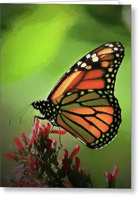 Greeting Card featuring the photograph Stained Glass Butterfly by Penny Lisowski