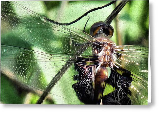 Greeting Card featuring the digital art Stained Glass Dragonfly by JC Findley