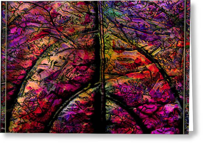 Stained Glass Not Greeting Card by Barbara Berney